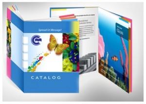 Mẫu gia công catalogue quy chuẩn